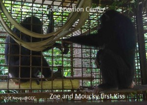 Rencontre Moucky et Zoe in cage FB