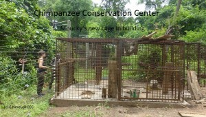 cage mouky (3pr FB)