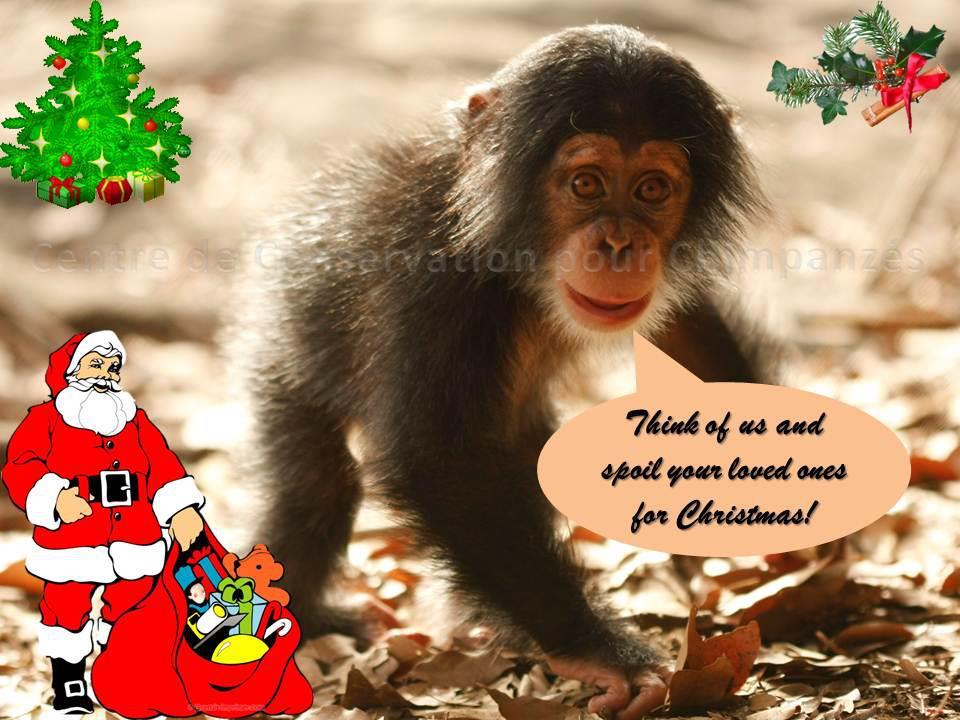ChristmasSoon
