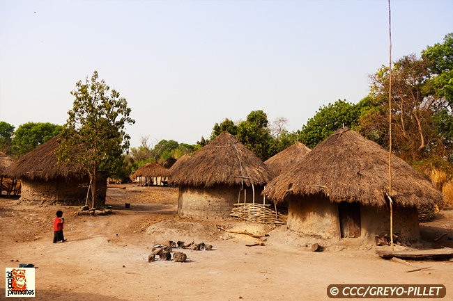 Village de Sambouya