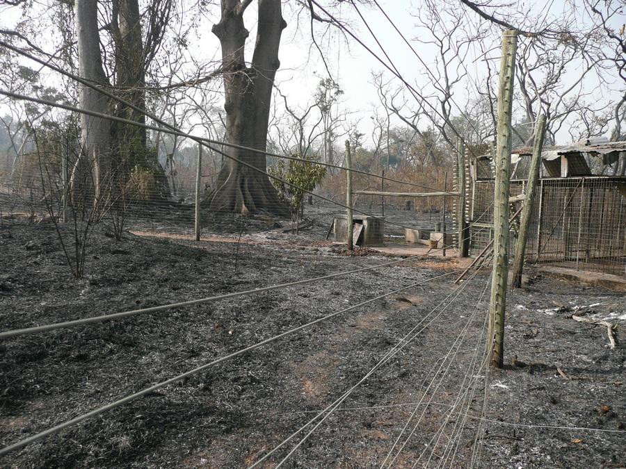 Les fromagers avaient subi aussi les ravages du feu de 2009 Photo CCC/C.Colin