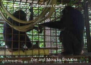 Rencontre Moucky et Zoe in cage FB
