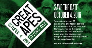 Great-Apes-Giving-Day-Social01_1200x630-B3